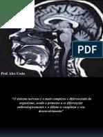 ANATOMOFISIOLOGIA DO SNC (1)