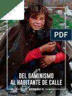 Del Gaminismo Al Habitante de Calle