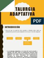 Metalurgia adaptativa