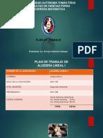 Presentación1 DE 207.pptx