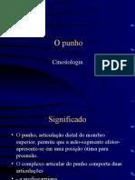 punho-cinesiologia
