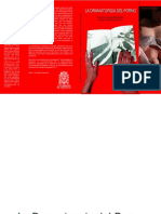 LA_DRAMATURGIA_DEL_PORNO_01.pdf.pdf
