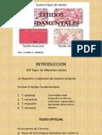 TEJIDOS FUNDAMENTALES.2