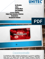 Equipo 3 Hematopoyesis ENF02A 20-2