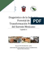 Capitulo 6 Diagnóstico de la Industria Forestal de Transformación Primaria del Sureste Mexicano.pdf