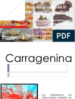 carrqgeninca diapositivas final.pdf