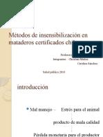 Métodos de insensibilización en mataderos certificados chilenos 2