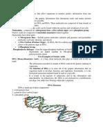 Nucleic-Acids