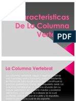 Caracteriasticas de La Columna Vertebral