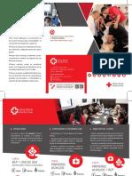 triptico-ppaa-cursos-editable.pdf