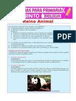 Reino-Animal-para-Quinto-de-Primaria