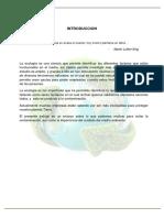 ensayo sobre ecologia