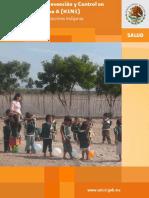 15_Lineamientos_CDI
