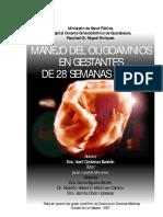 Cárdenas_Ramón.pdf