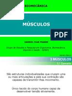 aula_musculos_gabriel