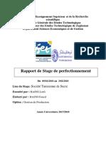 stage de perfectionement 2018 (1).docx