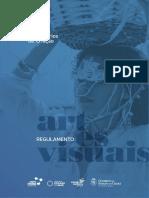 Regulamento 2020 - artes visuais