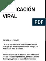 virus-130120225851-phpapp02.pdf