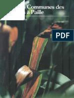 13167.pdf