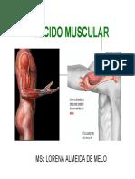 fisiologiahumana4-tecidomuscular-140304202313-phpapp02