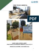 Informe de Supervisión Ambiental