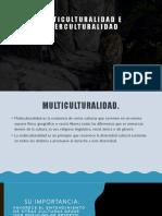 2A Multiculturalidad e interculturalidad