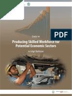 Study of Potential Economic Sectors in Gilgit Baltistan.pdf