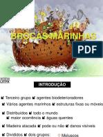 (2017)BROCAS MARINHAS