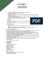 PERFIL-AUDITOR ENCARGADO-OCI.doc