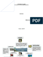 Mapa conceptual Terepaima