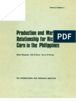 Production and Market Relationship for Rice and Corn in the Philippines (TB9)