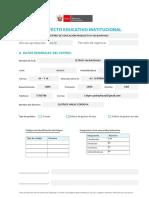 PEI 2019  - 2020 EN PROCESO (1)