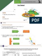 Gas Natural-Economía Minera y Petrolera