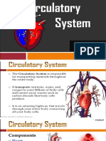 Circulatory-System-Group-1
