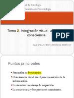 Tema 3. Integración Visual, Atención y Consciencia I