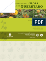 flora queretaro.pdf