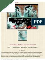 evilfaces_morgellons.pdf