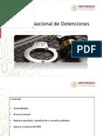REGISTRO NACIONAL DE DETENCIONES