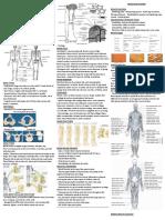 Anatomy_&_Physiology cheat sheet