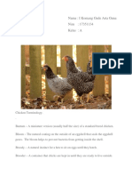 terminologi ayam.docx