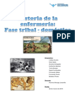 INFORME INTRO ENFERMERIA fase tribal doméstica.docx
