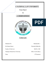Cyber Law.docx