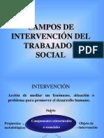PONENCIA CAMPOS DE INTERVENCIÓN