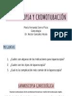 LAPAROSCOPIA Y CROMOLAPAROSCOPIA _ MFSP