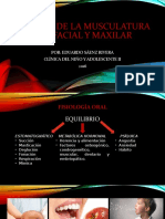 ANÁLISIS DE LA MUSCULATURA OROFACIAL Y MAXILAR.pptx