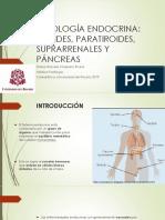 PATOLOGÍA ENDOCRINA.pptx