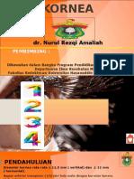 KORNEA dr. Nurul.pptx