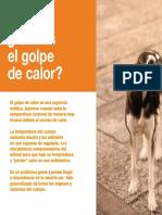 AV_20_6-10_Golpe_calor.pdf