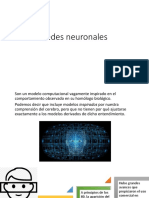red-neuronal-exp