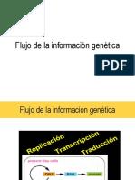 FLUJO-D-ELA-INFORMACIÓN-GENETICA